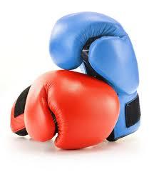 Telšiškiai boksininkai sėkmingai tęsia kovas
